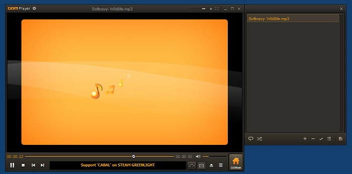 windows mkv player