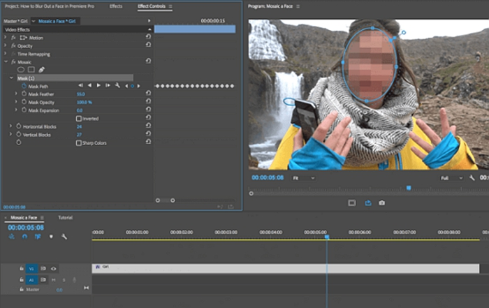 video-mosaic5